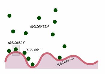 Adsorptionsbegriffe bildhaft erklärt