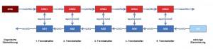 Schemazeichnung einer Extraktorkaskade mit fünf Stufen (Klick für große Version)